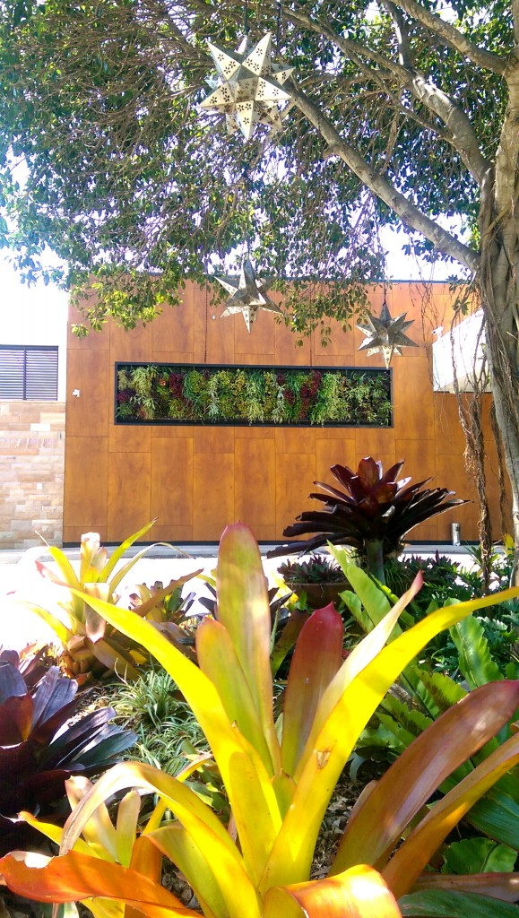 Outdoor Greenwall